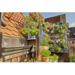 Huerto urbano nature up gardena con goteo215115