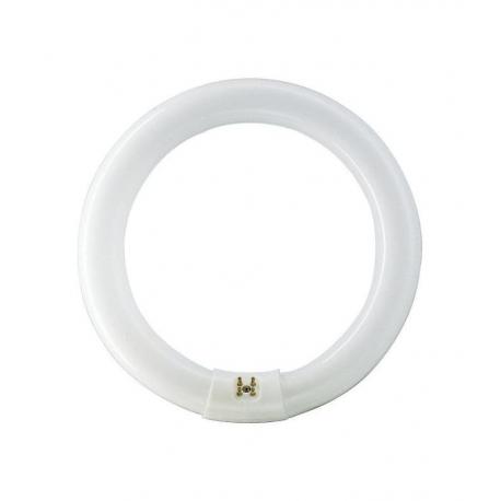 Fluorescente circular osram 22w 865