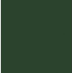 Esmalte brillante kolorea 750 ml verde mayo