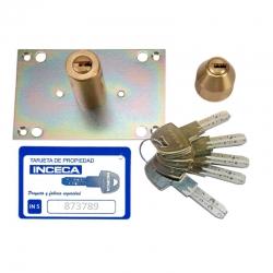 Cilindro inceca para cerraduras de 306 a 312 llave in5 latonado