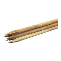 Tutor madera pino 6 unidades