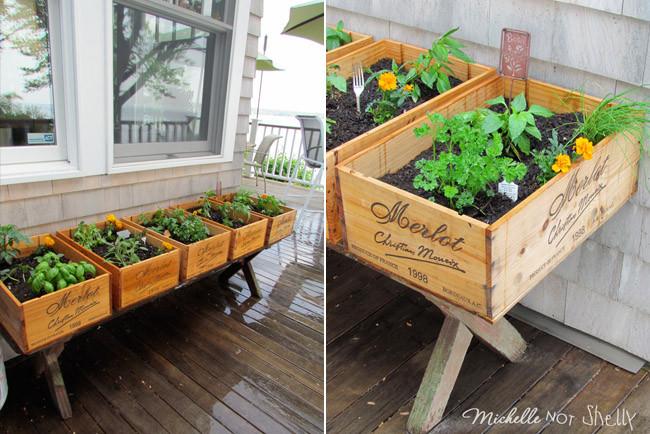 Un poco de jardineria ferreteria bras ferreteria cofac - Plantar hierbas aromaticas ...