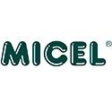 Micel Vega